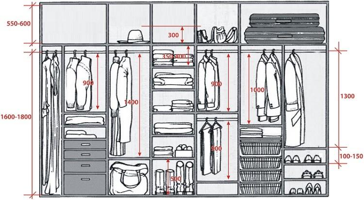 как придумать шкаф купе внутри с размерами